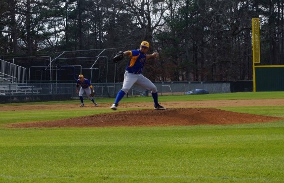 Photo for Baseball Goes Head to Head with Falcons, Swedes Fall in Game One 5-3