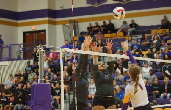 Photo for Swedes Fall in Three Sets to KWU